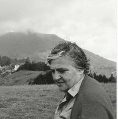 Picture of Etel Adnan