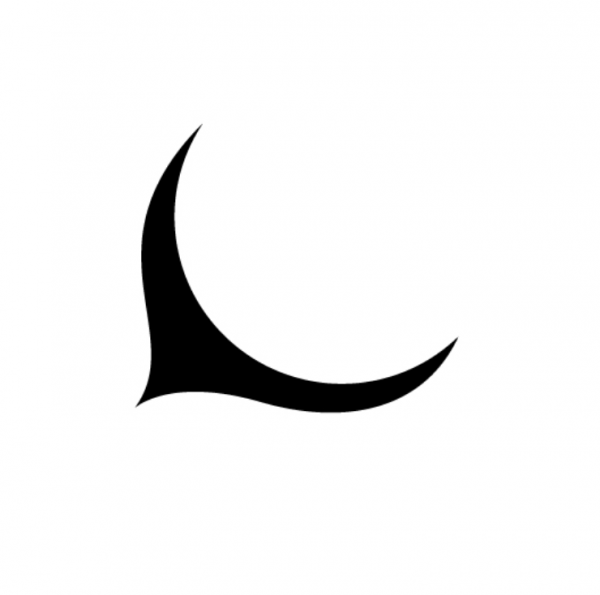 nightboat moon logo